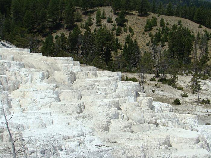 Национальный Парк Йеллоустоуна (Yellowstone National Park) 96303