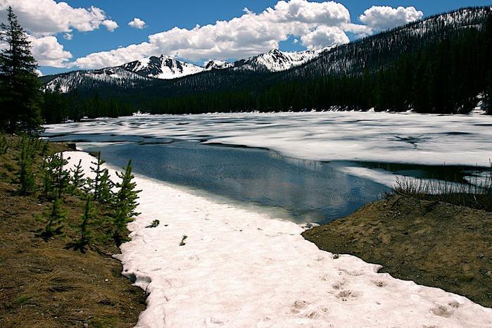 Национальный Парк Йеллоустоуна (Yellowstone National Park) 95938