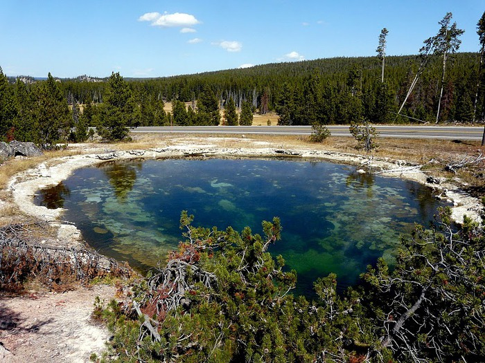Национальный Парк Йеллоустоуна (Yellowstone National Park) 14276