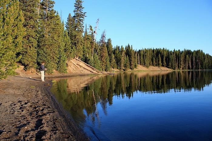 Национальный Парк Йеллоустоуна (Yellowstone National Park) 46044