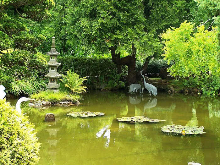 Японский чайный сад -(Hakone Japanese Tea Garden) 43840