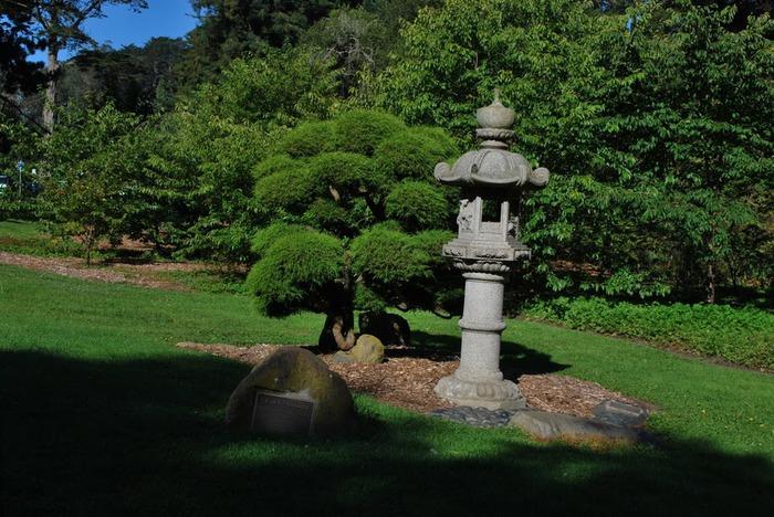 Японский чайный сад -(Hakone Japanese Tea Garden) 31194
