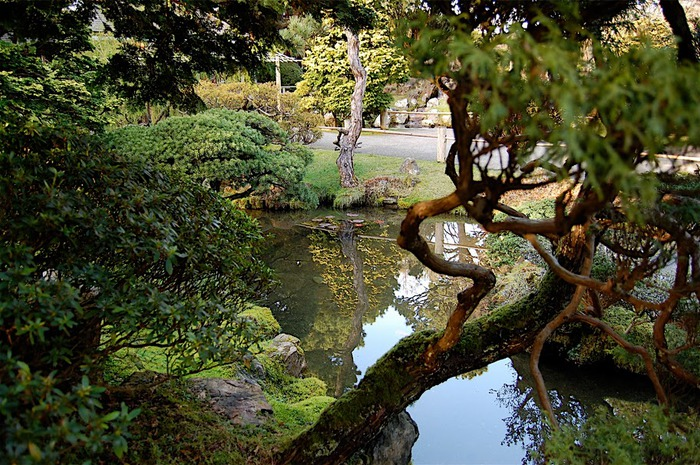 Японский чайный сад -(Hakone Japanese Tea Garden) 59925