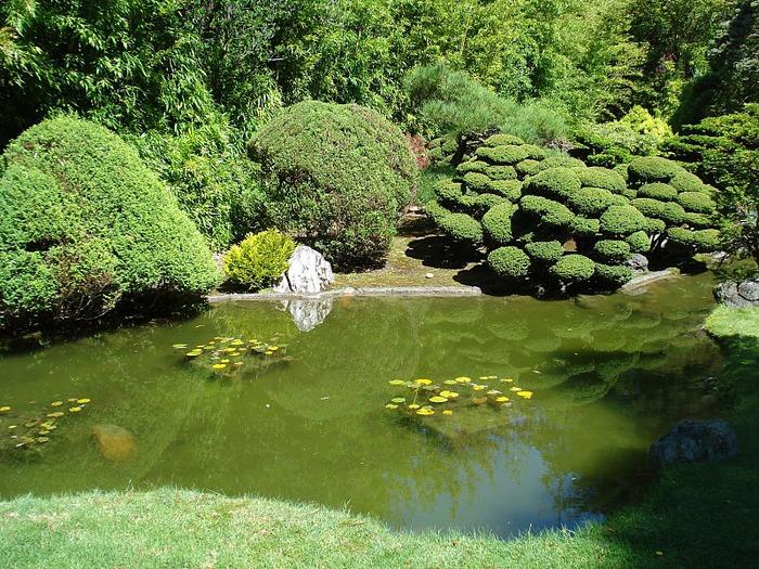 Японский чайный сад -(Hakone Japanese Tea Garden) 97509