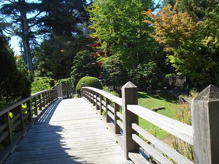 Японский чайный сад -(Hakone Japanese Tea Garden) 28261