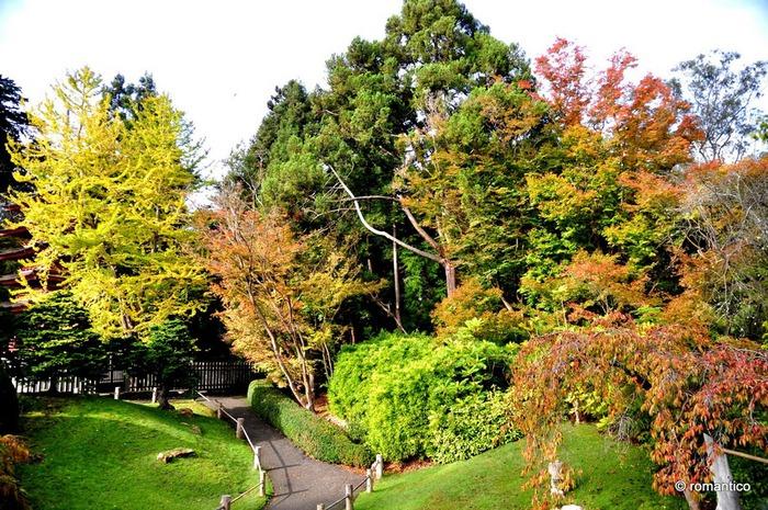 Японский чайный сад -(Hakone Japanese Tea Garden) 99639