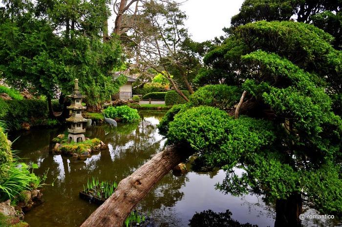 Японский чайный сад -(Hakone Japanese Tea Garden) 79702