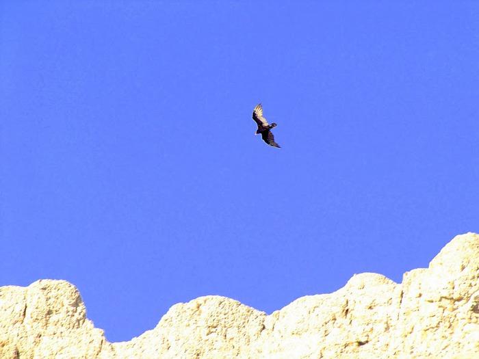 Национальный парк Badlands 21732