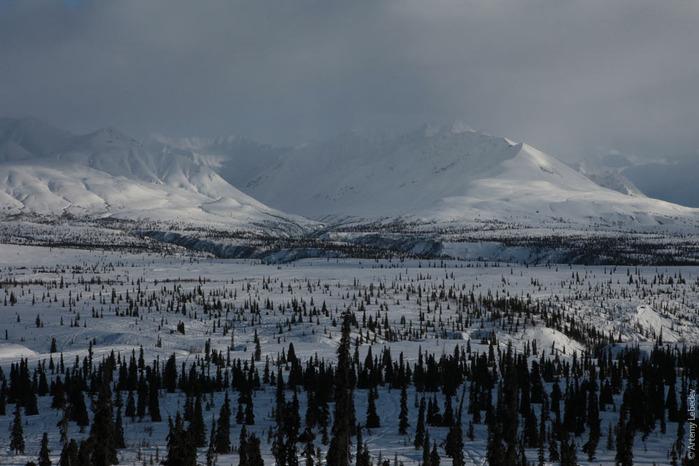 Аляска 91018