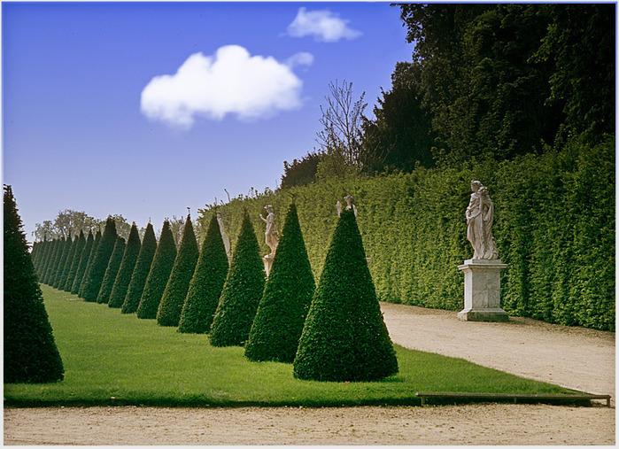 Поедем в царственный Версаль-2 16652