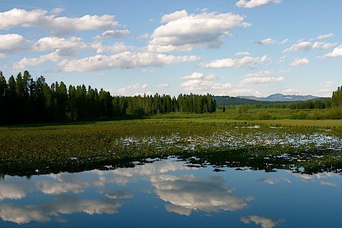 Национальный парк - Гранд Тетон 78844