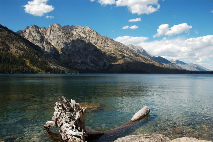 Национальный парк - Гранд Тетон 69793