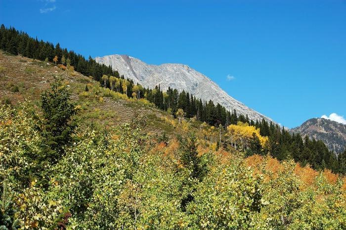 Национальный парк - Гранд Тетон 63563