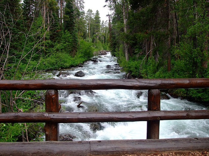 Национальный парк - Гранд Тетон 99476