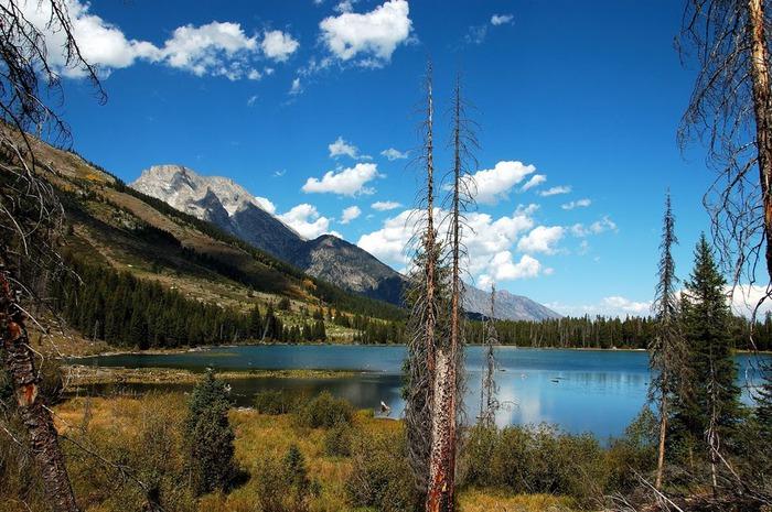 Национальный парк - Гранд Тетон 62048