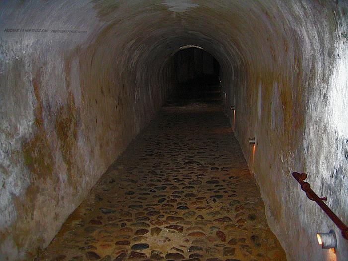 Замок Кронборг (Kronborg Castle) 92020