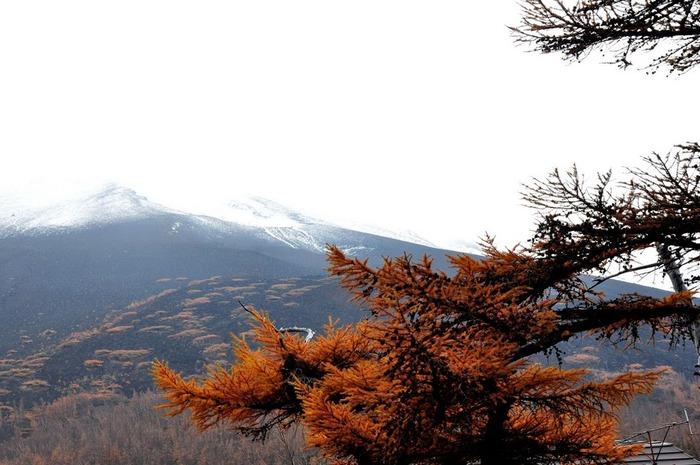 Япония: священная гора Фудзияма 16037