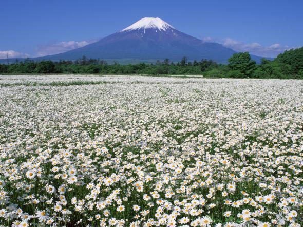 Япония: священная гора Фудзияма 18077