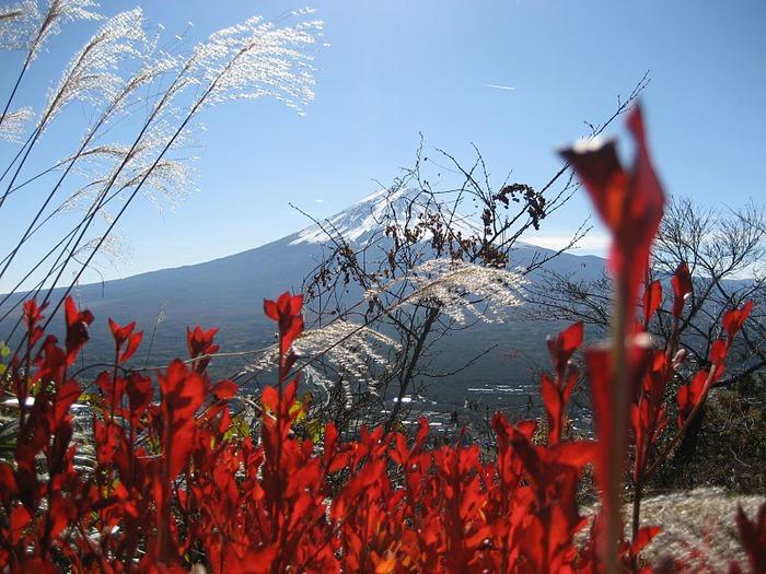 Япония: священная гора Фудзияма 19488