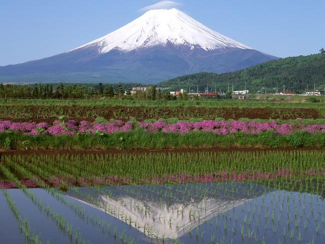 Япония: священная гора Фудзияма 48887