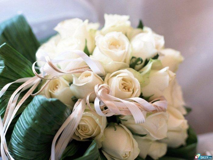 Розы,белые розы....
