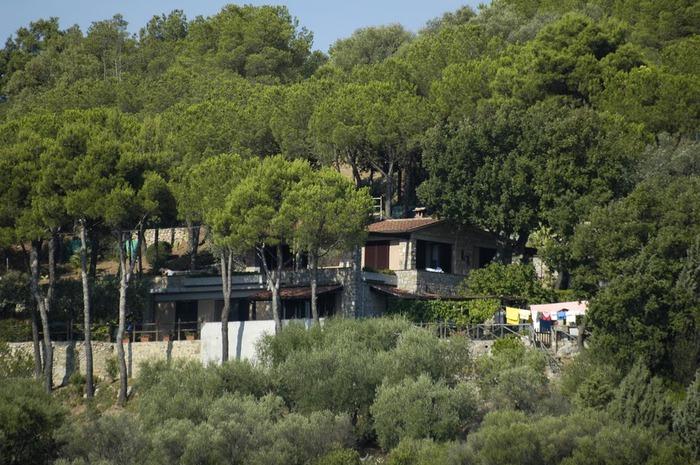 У низкого моря в Тоскане 66951
