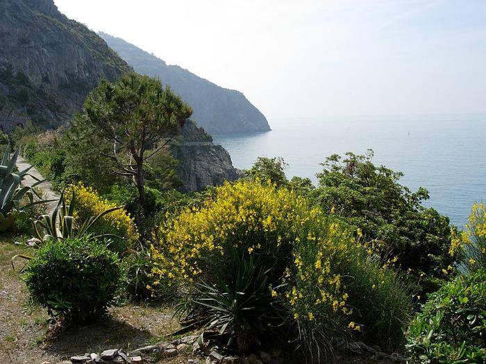 У низкого моря в Тоскане 73080