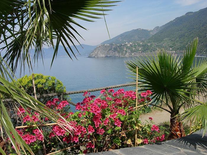 У низкого моря в Тоскане 51050
