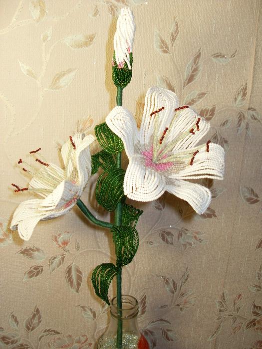 лилия | Записи с меткой лилия