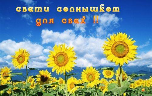 http://img0.liveinternet.ru/images/attach/c/1//59/98/59098480_10161055.jpg