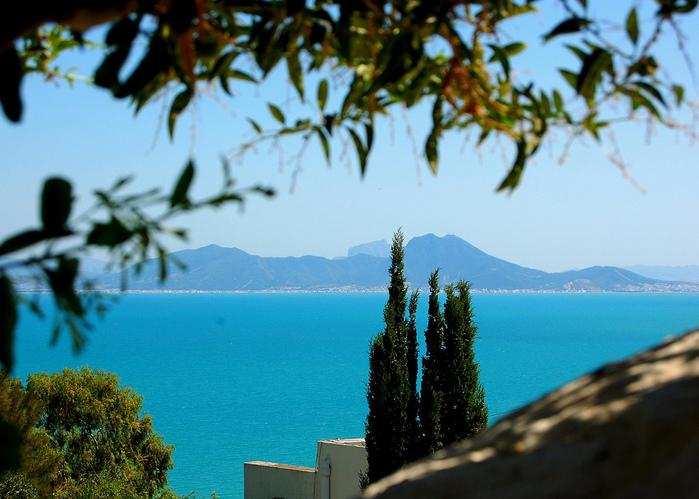 Тунис. Синий город - Sidi Bou Said 26182