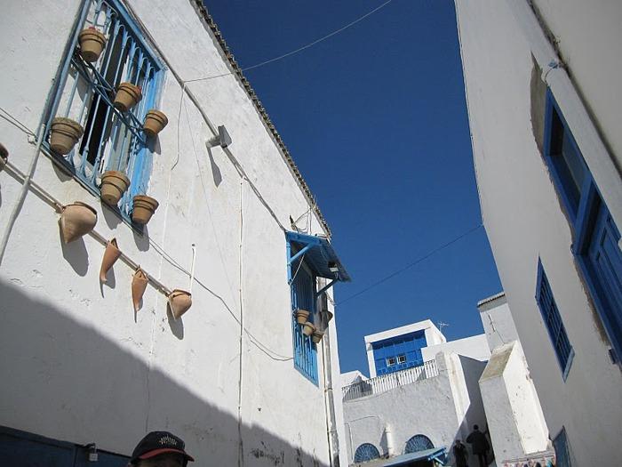 Тунис. Синий город - Sidi Bou Said 55453