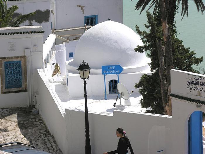 Тунис. Синий город - Sidi Bou Said 38887