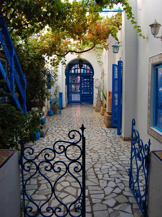 Тунис. Синий город - Sidi Bou Said 17237