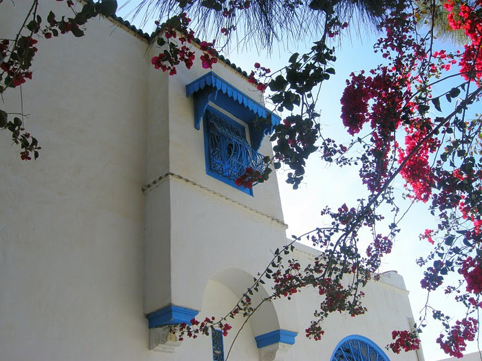 Тунис. Синий город - Sidi Bou Said 83737
