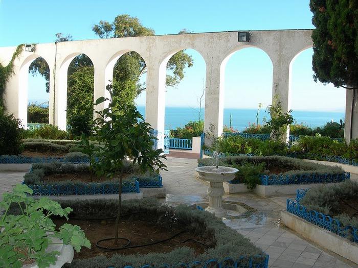 Тунис. Синий город - Sidi Bou Said 66368