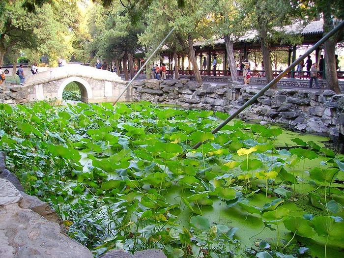 Пекин - Летний дворец императрицы 49312