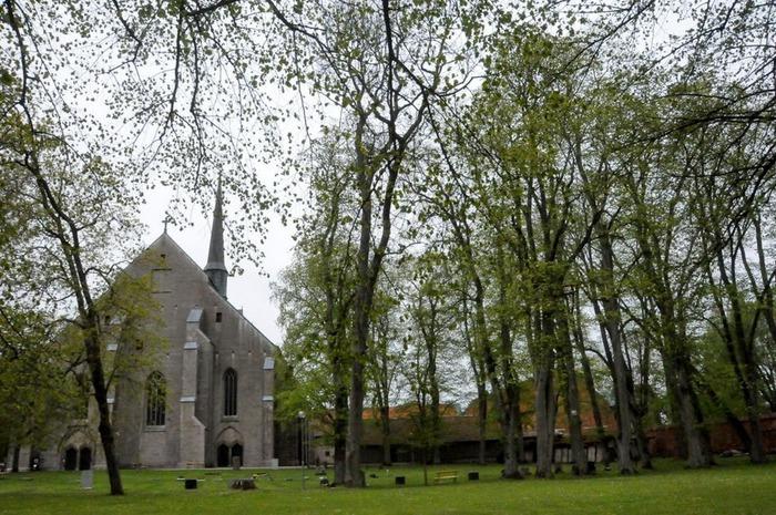 Замок Вадстена (Vadstena) и монастырь Святой Биргитты 34427
