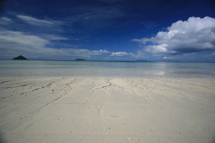 Тайланд - Острова Пи Пи--Phi Phi Islands 59397