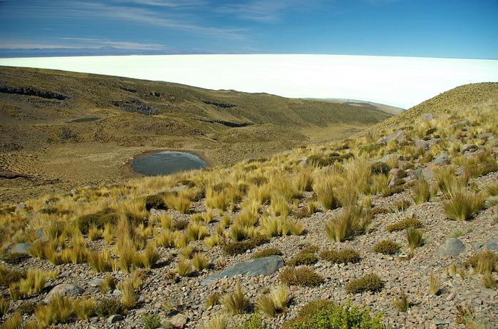 Солончак Уюни - Salar de Uyuni - Боливия 52426