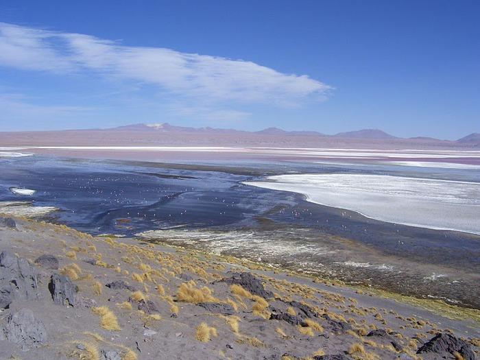 Солончак Уюни - Salar de Uyuni - Боливия 26636