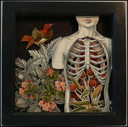 Картины из книг от Alexander Korzer Robinson