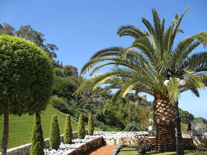 Хайфа, Бахайские сады 52669