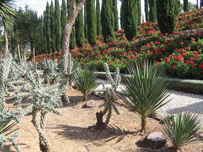 Хайфа, Бахайские сады 16085