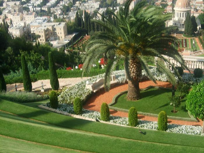 Хайфа, Бахайские сады 12366