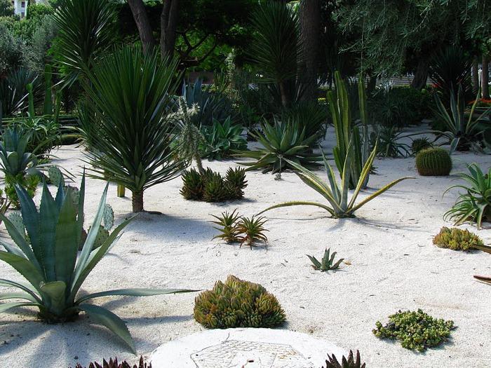 Хайфа, Бахайские сады 38771