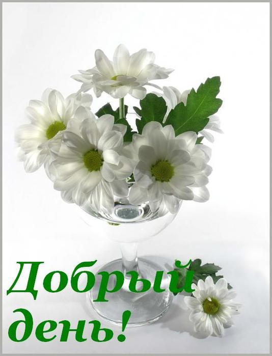44202098_35692016_dobruyy_den (534x699, 38 Kb)