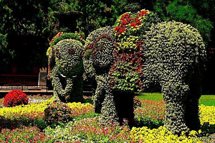 Пекин - Летний дворец императрицы 77564