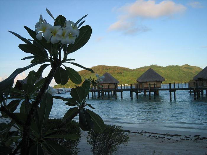 Остров Бора-Бора - жемчужина Тихого океана с перламутровой лагуной 11980