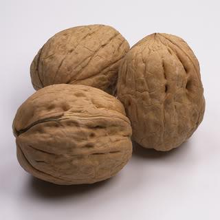 walnuts (320x320, 16 Kb)